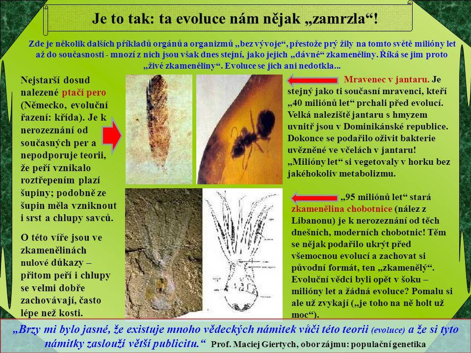 """Je to tak: ta evoluce nám nějak """"zamrzla""""! Zde je několik dalších příkladů orgánů a organizmů """"bez vývoje"""", přestože prý žily na tomto světě milióny l"""