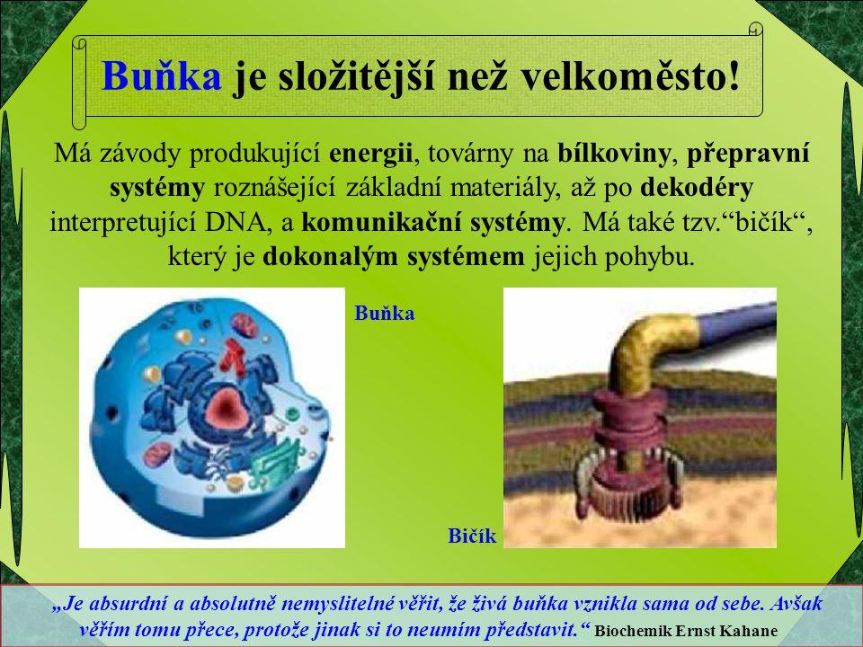 Má závody produkující energii, továrny na bílkoviny, přepravní systémy roznášející základní materiály, až po dekodéry interpretující DNA, a komunikačn