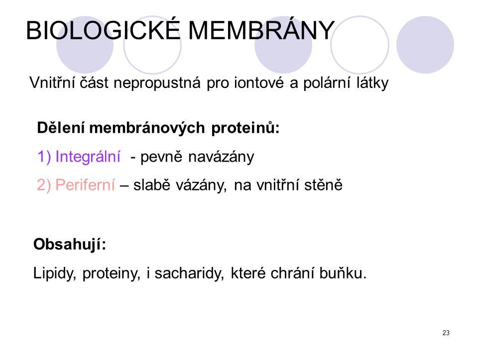 23 BIOLOGICKÉ MEMBRÁNY Vnitřní část nepropustná pro iontové a polární látky Dělení membránových proteinů: 1) Integrální - pevně navázány 2) Periferní – slabě vázány, na vnitřní stěně Obsahují: Lipidy, proteiny, i sacharidy, které chrání buňku.