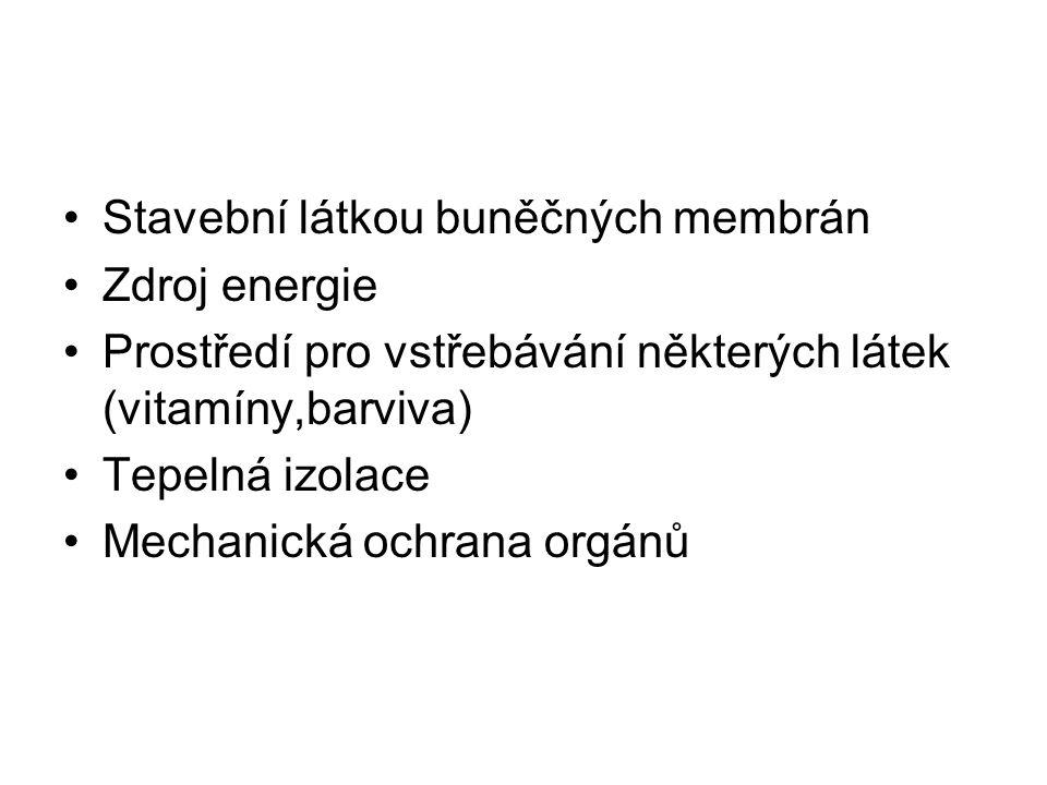 Stavební látkou buněčných membrán Zdroj energie Prostředí pro vstřebávání některých látek (vitamíny,barviva) Tepelná izolace Mechanická ochrana orgánů