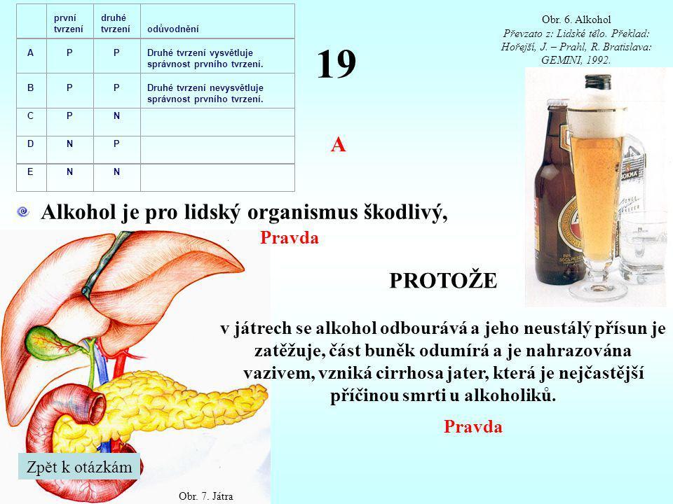 19 Alkohol je pro lidský organismus škodlivý, PROTOŽE v játrech se alkohol odbourává a jeho neustálý přísun je zatěžuje, část buněk odumírá a je nahra
