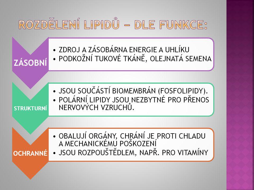 JEDNODUCHÉ TRIACYLGLYCEROLY (TUKY A OLEJE) VOSKY SLOŽENÉ FOSFOLIPIDY GLYKOLIPIDY LIPOPROTEINY ODVOZENÉ IZOPRENOIDY (TERPENY A STEROIDY) PROSTAGLANDINY LIPOFILNÍ VITAMÍNY