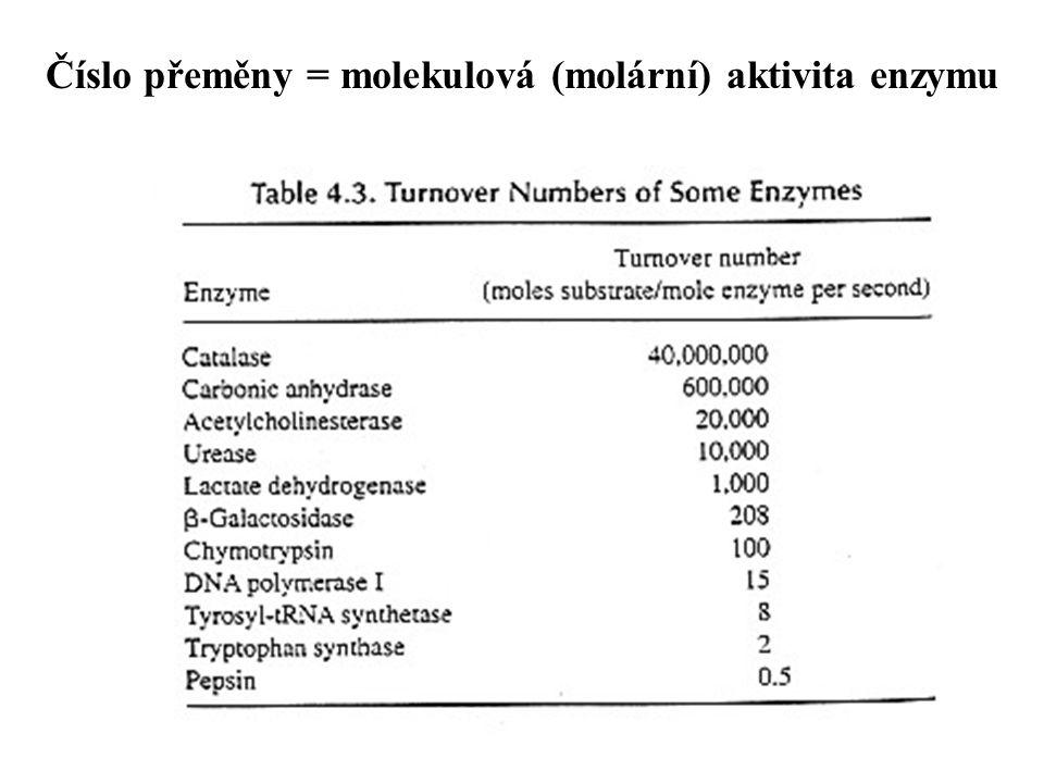 Číslo přeměny = molekulová (molární) aktivita enzymu