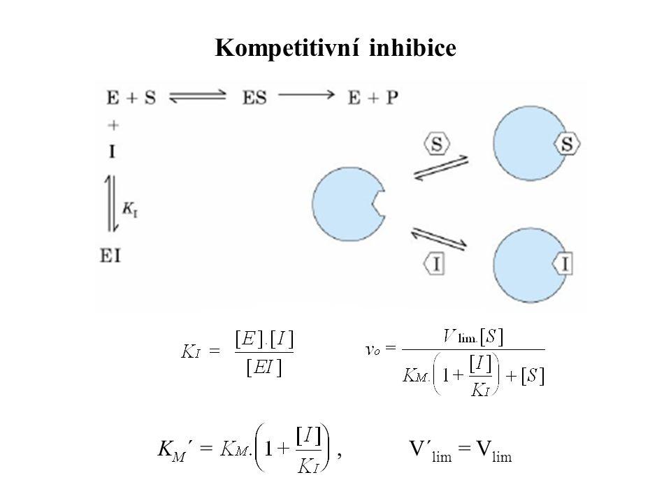 K M ´ =, V´ lim = V lim Kompetitivní inhibice