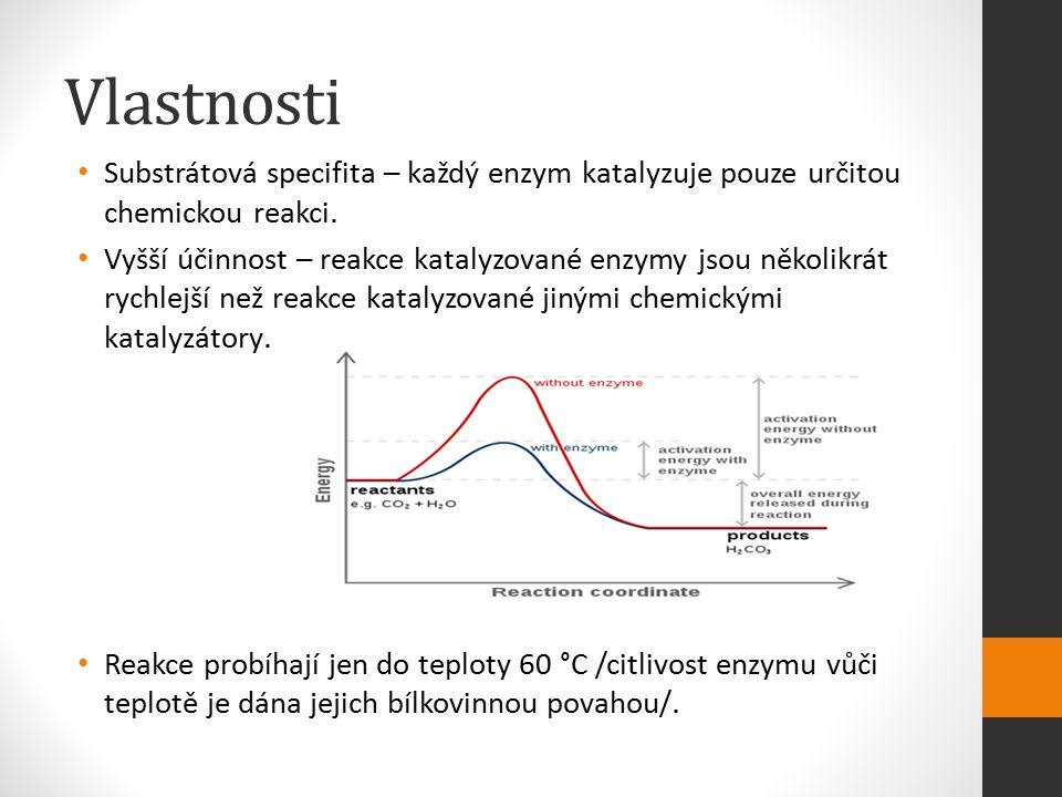 Vlastnosti Substrátová specifita – každý enzym katalyzuje pouze určitou chemickou reakci. Vyšší účinnost – reakce katalyzované enzymy jsou několikrát
