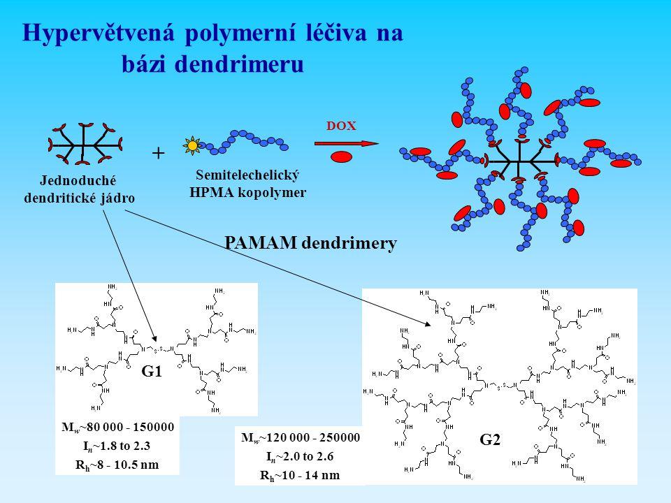 Jednoduché dendritické jádro Semitelechelický HPMA kopolymer Hypervětvená polymerní léčiva na bázi dendrimeru G1 G2 + PAMAM dendrimery DOX M w ~80 000