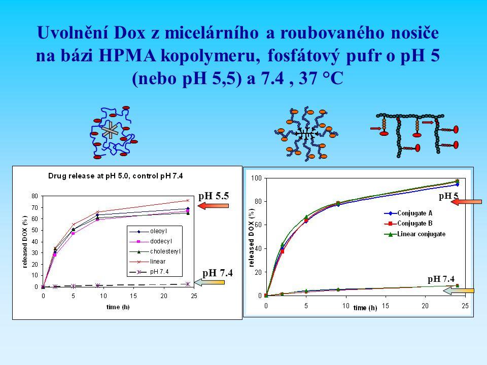 Uvolnění Dox z micelárního a roubovaného nosiče na bázi HPMA kopolymeru, fosfátový pufr o pH 5 (nebo pH 5,5) a 7.4, 37 °C pH 5 pH 7.4 pH 5.5
