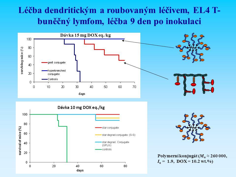 Léčba dendritickým a roubovaným léčivem, EL4 T- buněčný lymfom, léčba 9 den po inokulaci Dávka 15 mg DOX eq./kg Polymerní konjugát (M w ≈ 260 000, I n