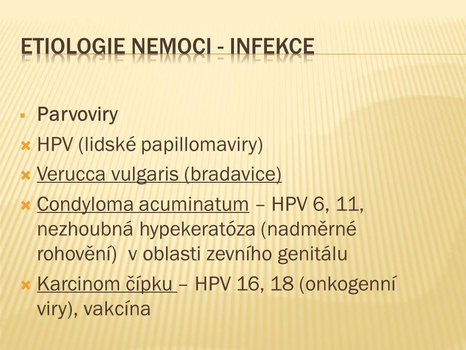  Parvoviry  HPV (lidské papillomaviry)  Verucca vulgaris (bradavice)  Condyloma acuminatum – HPV 6, 11, nezhoubná hypekeratóza (nadměrné rohovění)