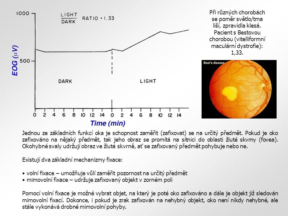 Jednou ze základních funkcí oka je schopnost zaměřit (zafixovat) se na určitý předmět. Pokud je oko zafixováno na nějaký předmět, tak jeho obraz se pr