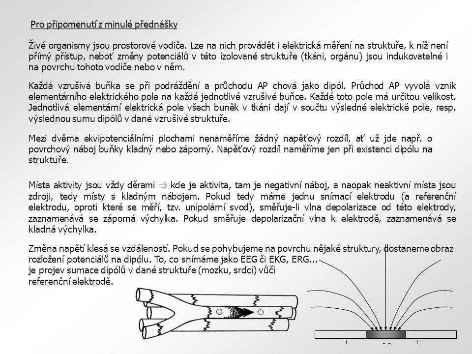 bělimacévnatka sítnice rohovka zornice čočka duhovka ciliární tělísko optický nerv Oko – generátor elektrických potenciálů  Du Bois-Reymond a potenciály – oko je také generátor elektrických potenciálů  do poloviny minulého století spíše experimentální záznamy elektrických projevů oka, až od 50.