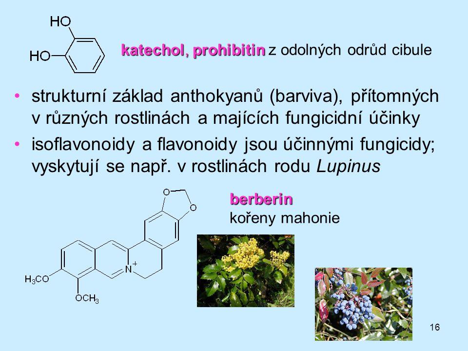 16 katechol, prohibitin katechol, prohibitin z odolných odrůd cibule strukturní základ anthokyanů (barviva), přítomných v různých rostlinách a majícíc