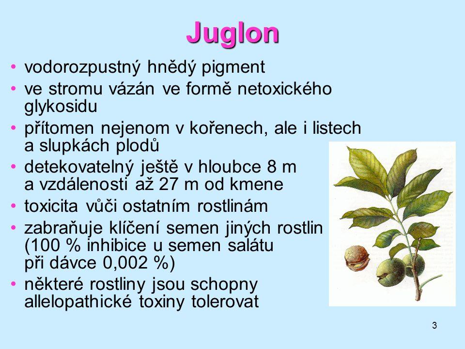 3 Juglon vodorozpustný hnědý pigment ve stromu vázán ve formě netoxického glykosidu přítomen nejenom v kořenech, ale i listech a slupkách plodů deteko