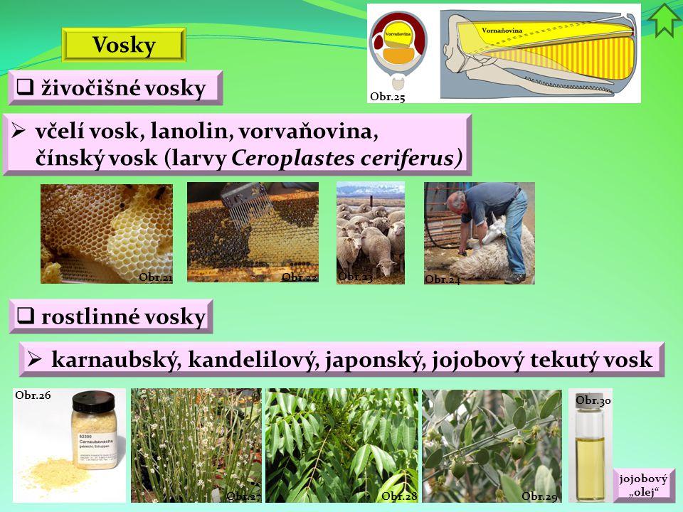 """Obr.30 jojobový """"olej"""" Obr.29 Obr.28Obr.27 Obr.26 Obr.25 Obr.24 Obr.23 Obr.22 Obr.21  včelí vosk, lanolin, vorvaňovina, čínský vosk (larvy Ceroplaste"""