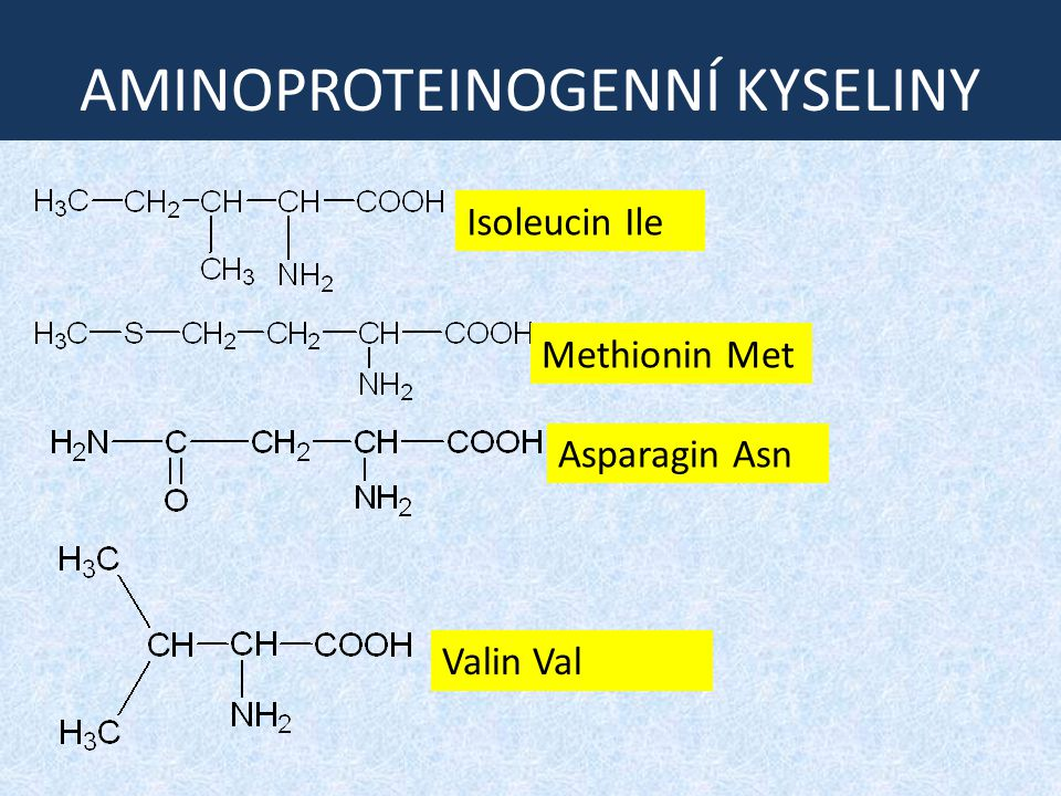 KONDENZACE aminokyselin zapište rovnicí kondenzaci valinu, methioninu a isoleucinu AMINOKYSELINY ÚLOHA