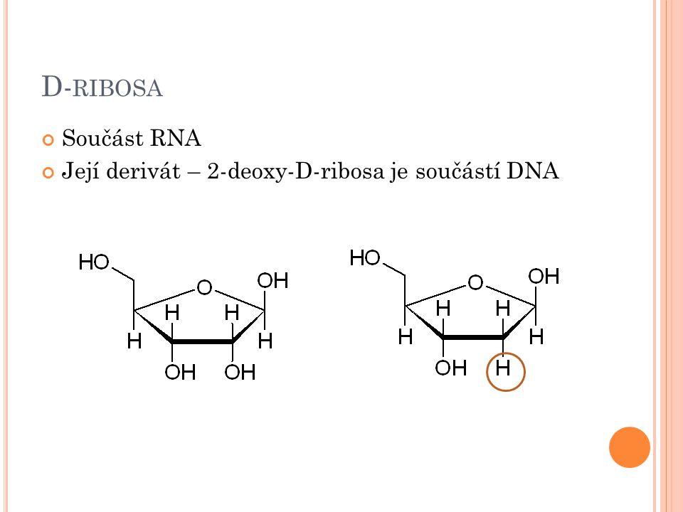 D- RIBOSA Součást RNA Její derivát – 2-deoxy-D-ribosa je součástí DNA