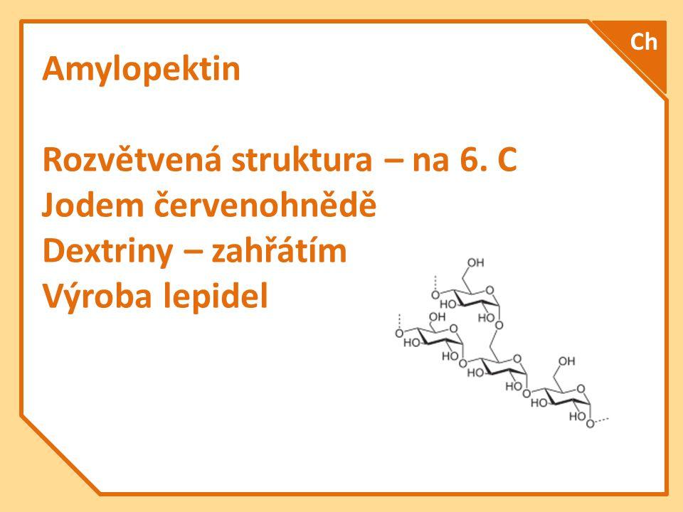 Amylopektin Rozvětvená struktura – na 6. C Jodem červenohnědě Dextriny – zahřátím Výroba lepidel Ch