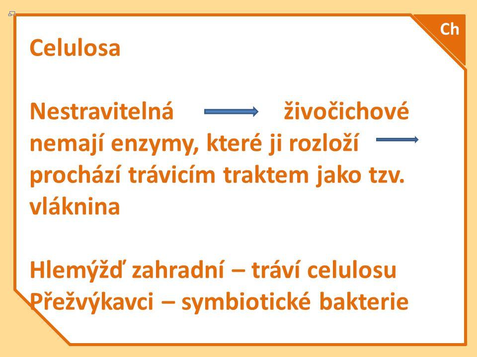Celulosa Nestravitelná živočichové nemají enzymy, které ji rozloží prochází trávicím traktem jako tzv.