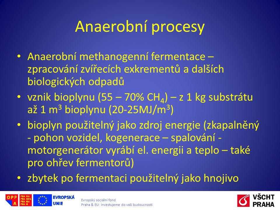 Anaerobní procesy Anaerobní methanogenní fermentace – zpracování zvířecích exkrementů a dalších biologických odpadů vznik bioplynu (55 – 70% CH 4 ) –