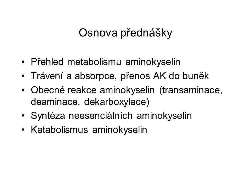 Osnova přednášky Přehled metabolismu aminokyselin Trávení a absorpce, přenos AK do buněk Obecné reakce aminokyselin (transaminace, deaminace, dekarbox