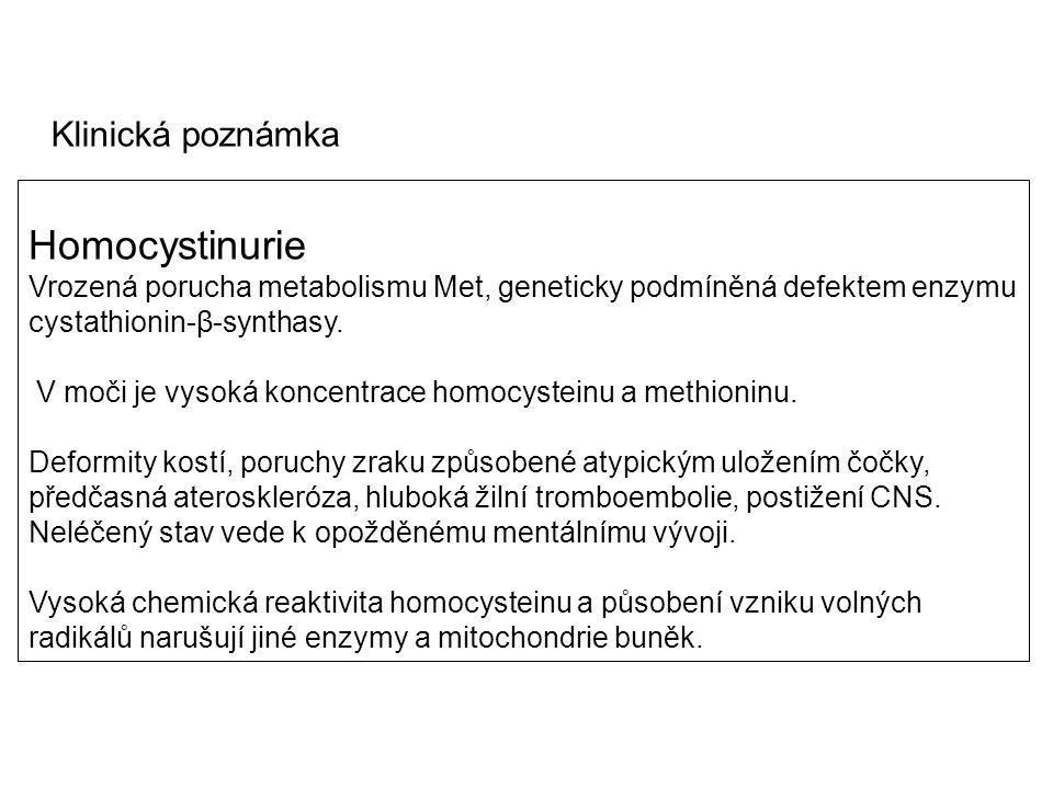 Homocystinurie Vrozená porucha metabolismu Met, geneticky podmíněná defektem enzymu cystathionin-β-synthasy. V moči je vysoká koncentrace homocysteinu