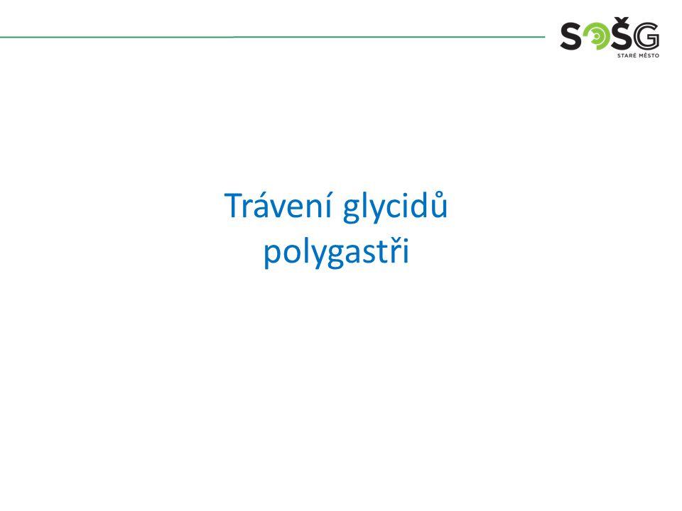 Trávení glycidů polygastři