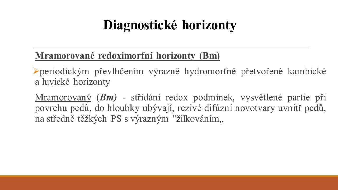 Mramorované redoximorfní horizonty (Bm)  periodickým převlhčením výrazně hydromorfně přetvořené kambické a luvické horizonty Mramorovaný (Bm) - stříd