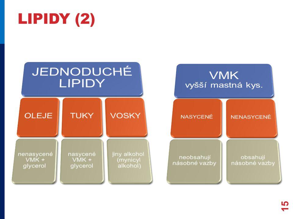 LIPIDY (2) 15