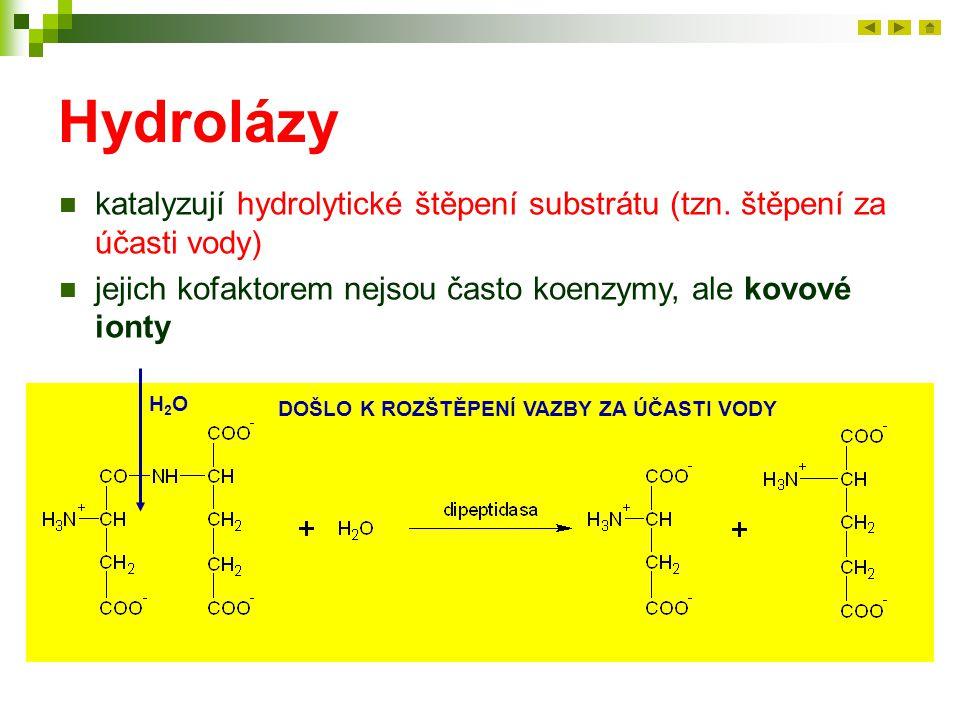 Hydrolázy katalyzují hydrolytické štěpení substrátu (tzn. štěpení za účasti vody) jejich kofaktorem nejsou často koenzymy, ale kovové ionty H2OH2O DOŠ