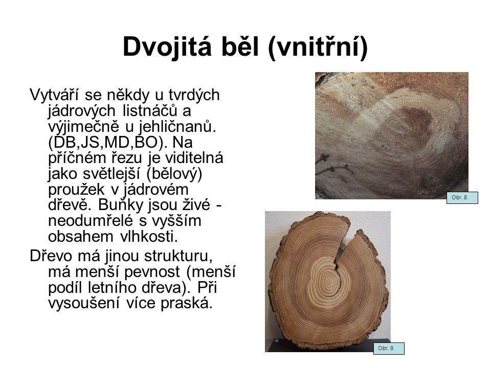 Točitost vláken Vyskytuje se u většiny druhů stromů.