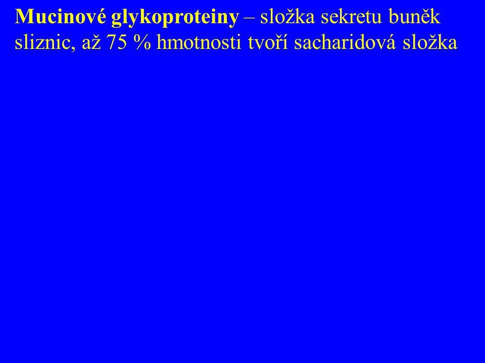 Mucinové glykoproteiny – složka sekretu buněk sliznic, až 75 % hmotnosti tvoří sacharidová složka