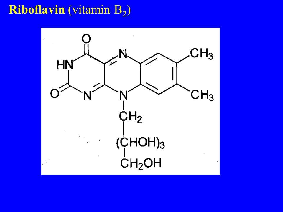 Riboflavin (vitamin B 2 )