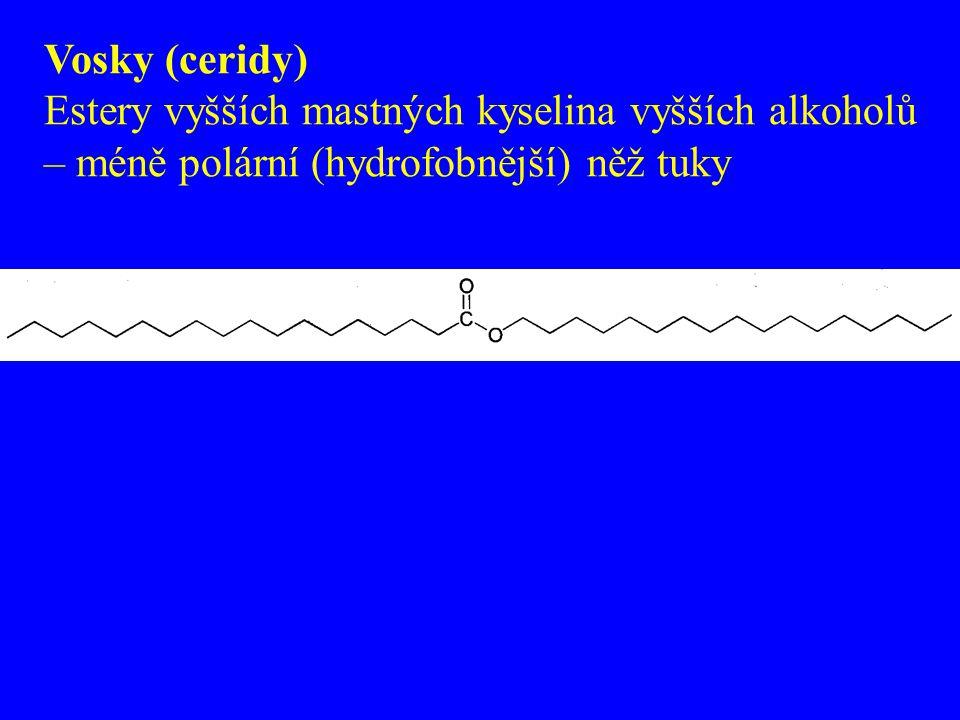 Vosky (ceridy) Estery vyšších mastných kyselina vyšších alkoholů – méně polární (hydrofobnější) něž tuky