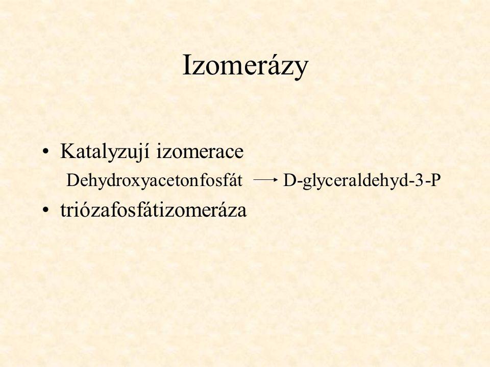 Izomerázy Katalyzují izomerace Dehydroxyacetonfosfát D-glyceraldehyd-3-P triózafosfátizomeráza