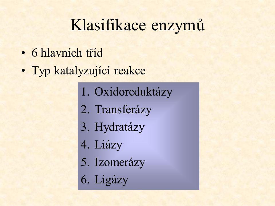 Klasifikace enzymů 6 hlavních tříd Typ katalyzující reakce 1.Oxidoreduktázy 2.Transferázy 3.Hydratázy 4.Liázy 5.Izomerázy 6.Ligázy