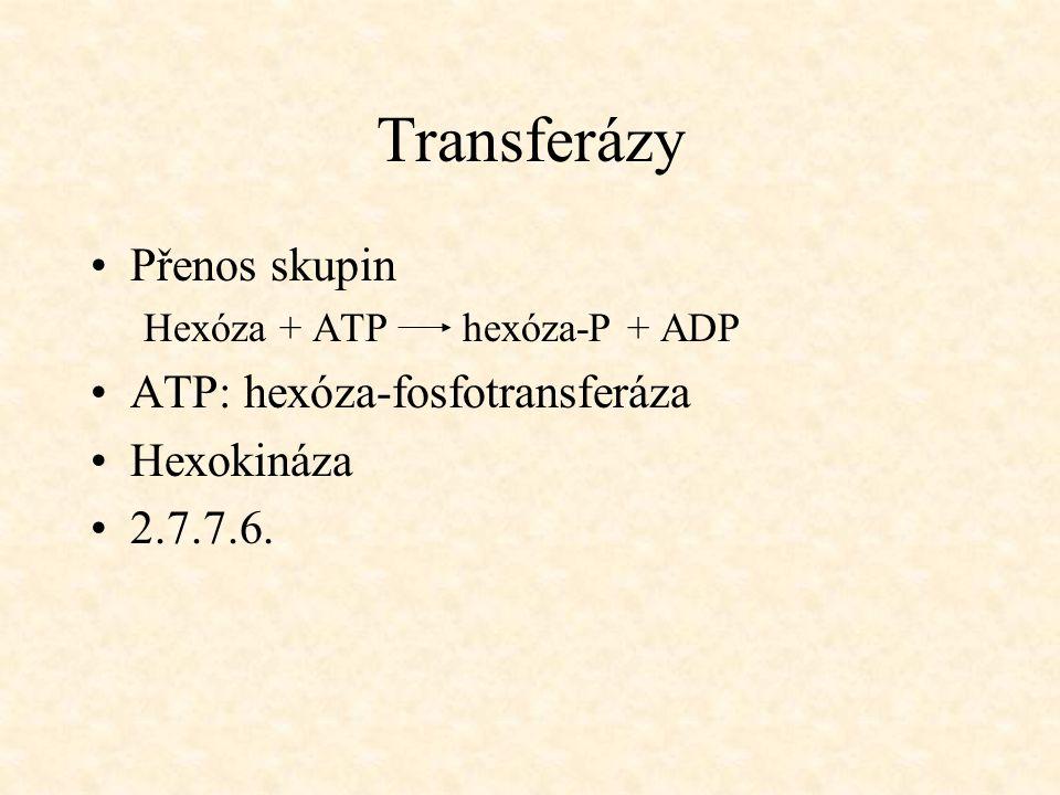 Transferázy Přenos skupin Hexóza + ATP hexóza-P + ADP ATP: hexóza-fosfotransferáza Hexokináza 2.7.7.6.