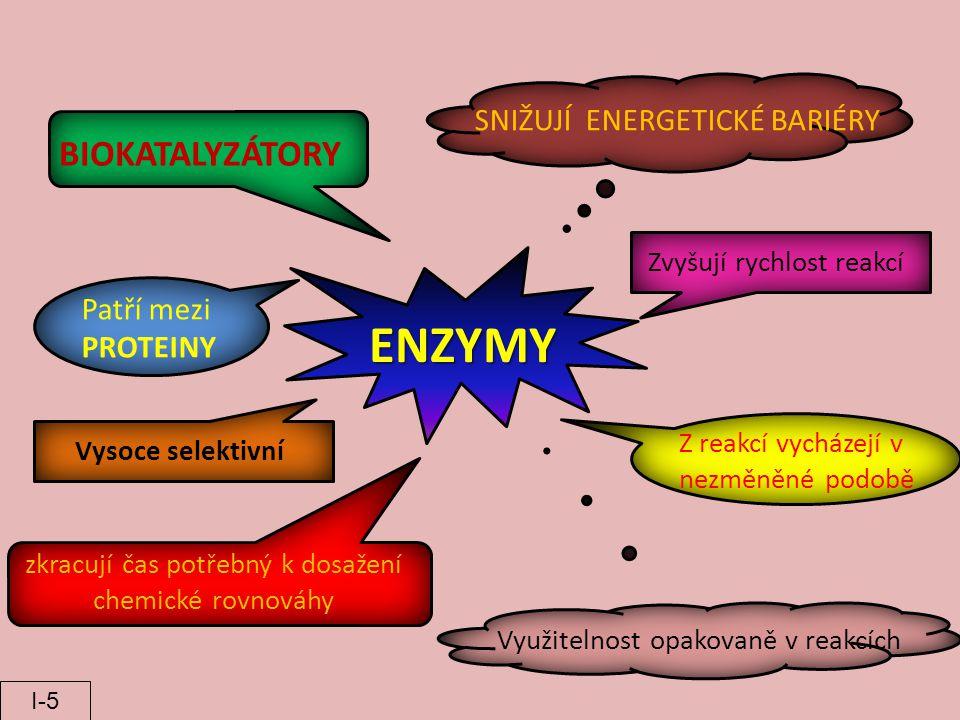 ENZYMY BIOKATALYZÁTORY SNIŽUJÍ ENERGETICKÉ BARIÉRY Z reakcí vycházejí v nezměněné podobě Využitelnost opakovaně v reakcích zkracují čas potřebný k dos