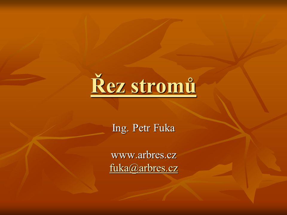 Řez stromů Ing. Petr Fuka www.arbres.cz fuka@arbres.cz