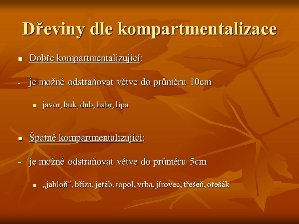 """Dřeviny dle kompartmentalizace Dobře kompartmentalizující: Dobře kompartmentalizující: - je možné odstraňovat větve do průměru 10cm javor, buk, dub, habr, lípa javor, buk, dub, habr, lípa Špatně kompartmentalizující: Špatně kompartmentalizující: -je možné odstraňovat větve do průměru 5cm """"jabloň , bříza, jeřáb, topol, vrba, jírovec, třešeň, ořešák """"jabloň , bříza, jeřáb, topol, vrba, jírovec, třešeň, ořešák"""