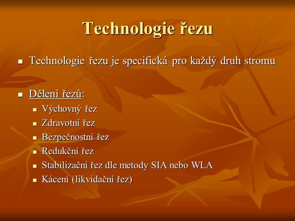 Technologie řezu Technologie řezu je specifická pro každý druh stromu Technologie řezu je specifická pro každý druh stromu Dělení řezů: Dělení řezů: Výchovný řez Výchovný řez Zdravotní řez Zdravotní řez Bezpečnostní řez Bezpečnostní řez Redukční řez Redukční řez Stabilizační řez dle metody SIA nebo WLA Stabilizační řez dle metody SIA nebo WLA Kácení (likvidační řez) Kácení (likvidační řez)