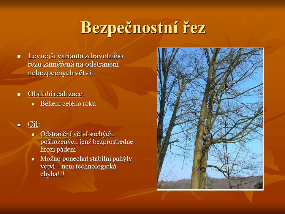 Bezpečnostní řez Levnější varianta zdravotního řezu zaměřená na odstranění nebezpečných větví.