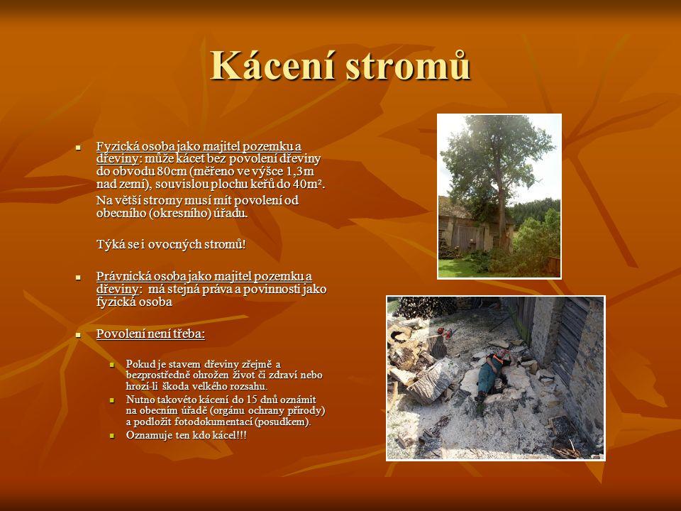 Kácení stromů Fyzická osoba jako majitel pozemku a dřeviny: může kácet bez povolení dřeviny do obvodu 80cm (měřeno ve výšce 1,3m nad zemí), souvislou