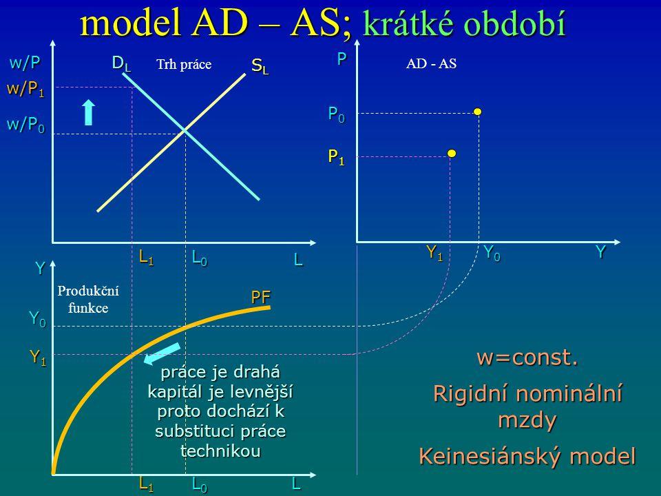 model AD – AS; krátké období w/P L DLDLDLDL L0L0L0L0 Y L1L1L1L1 L0L0L0L0 L1L1L1L1 L Y1Y1Y1Y1 Y0Y0Y0Y0 w/P 0 w/P 1 SLSLSLSL PF P0P0P0P0 P1P1P1P1 Y1Y1Y1