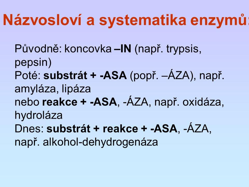Názvosloví a systematika enzymů: Původně: koncovka –IN (např. trypsis, pepsin) Poté: substrát + -ASA (popř. –ÁZA), např. amyláza, lipáza nebo reakce +