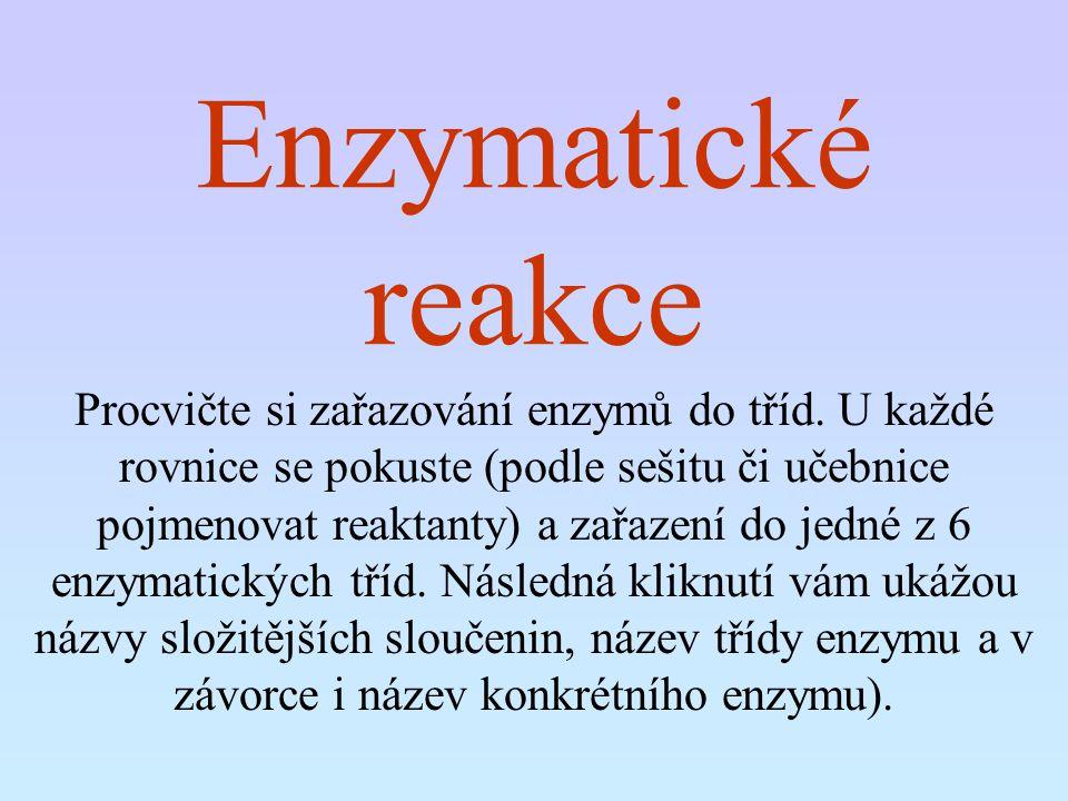 Enzymatické reakce Procvičte si zařazování enzymů do tříd. U každé rovnice se pokuste (podle sešitu či učebnice pojmenovat reaktanty) a zařazení do je
