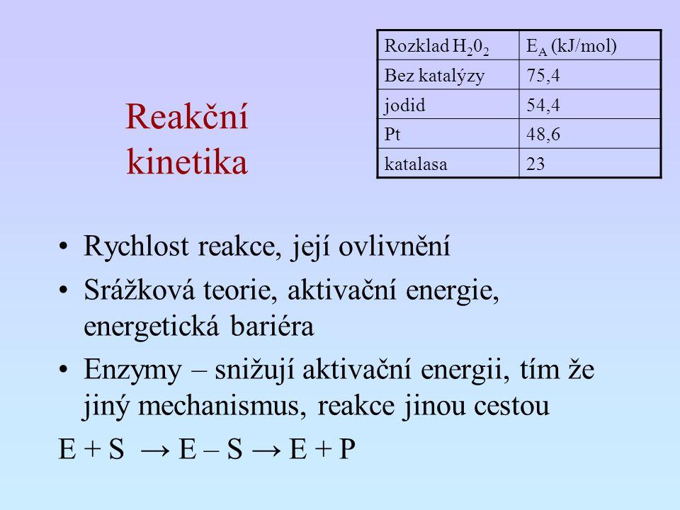 Reakční kinetika Rychlost reakce, její ovlivnění Srážková teorie, aktivační energie, energetická bariéra Enzymy – snižují aktivační energii, tím že ji