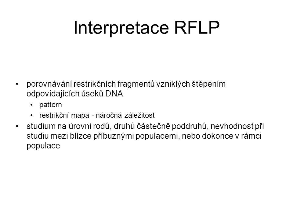 Interpretace RFLP porovnávání restrikčních fragmentů vzniklých štěpením odpovídajících úseků DNA pattern restrikční mapa - náročná záležitost studium