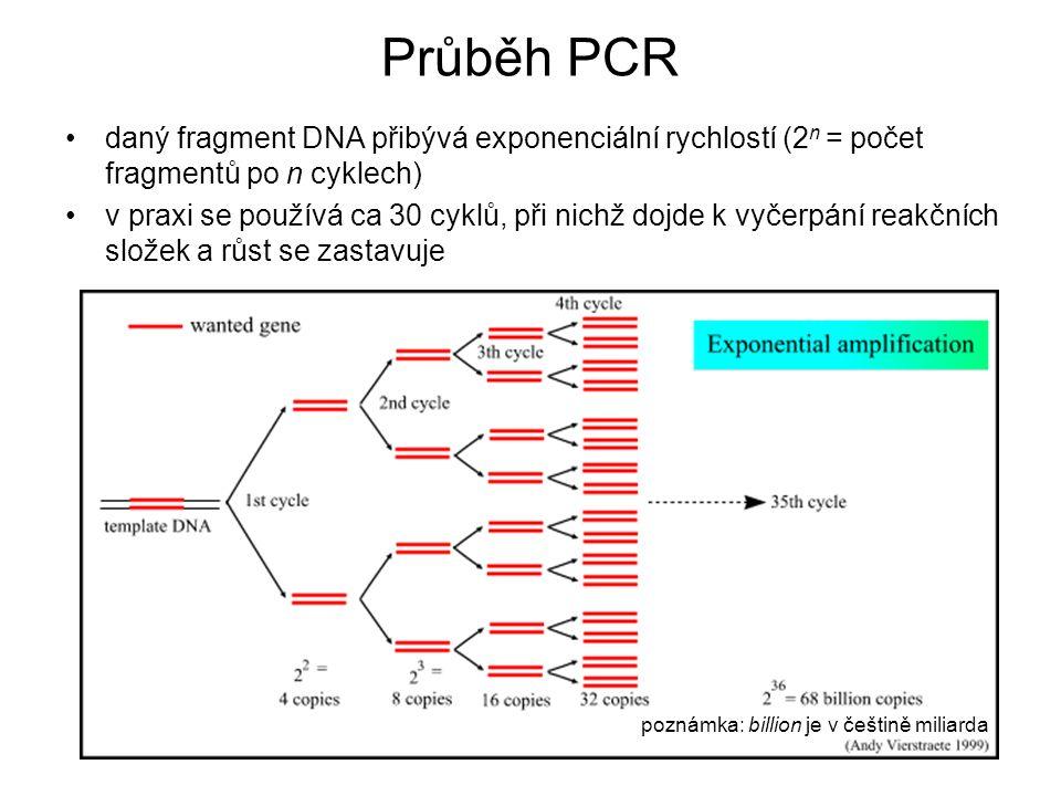 daný fragment DNA přibývá exponenciální rychlostí (2 n = počet fragmentů po n cyklech) v praxi se používá ca 30 cyklů, při nichž dojde k vyčerpání rea