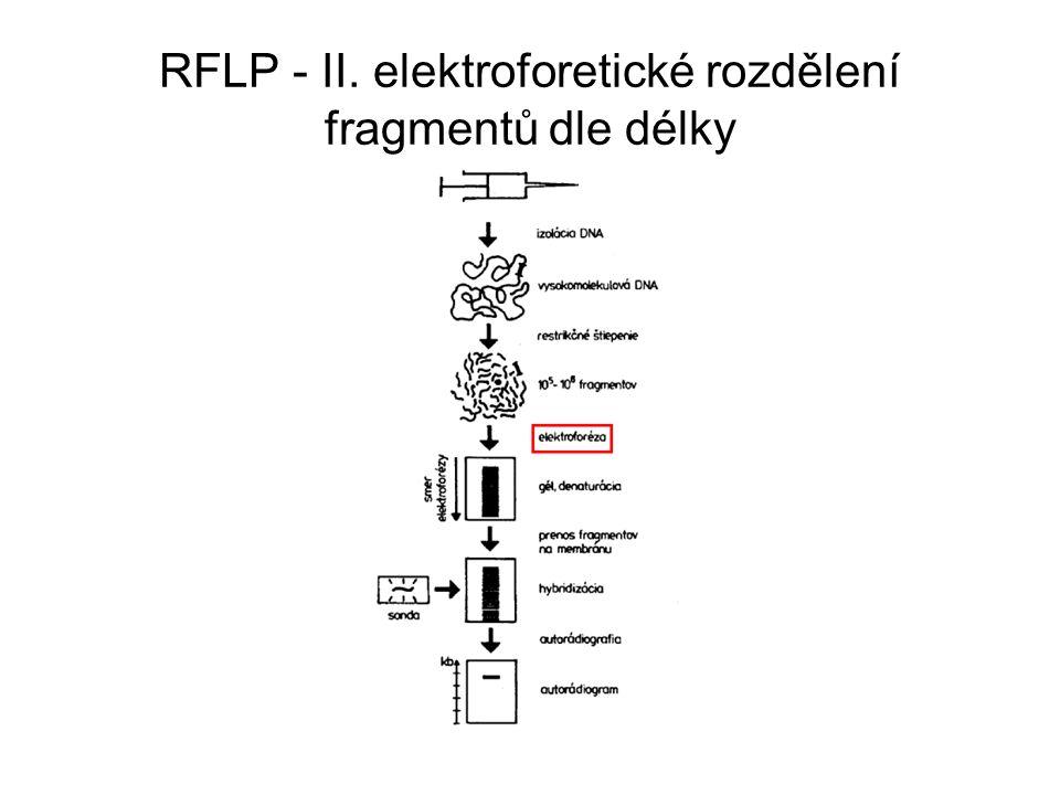 Interpretace RFLP porovnávání restrikčních fragmentů vzniklých štěpením odpovídajících úseků DNA pattern restrikční mapa - náročná záležitost studium na úrovni rodů, druhů částečně poddruhů, nevhodnost při studiu mezi blízce příbuznými populacemi, nebo dokonce v rámci populace
