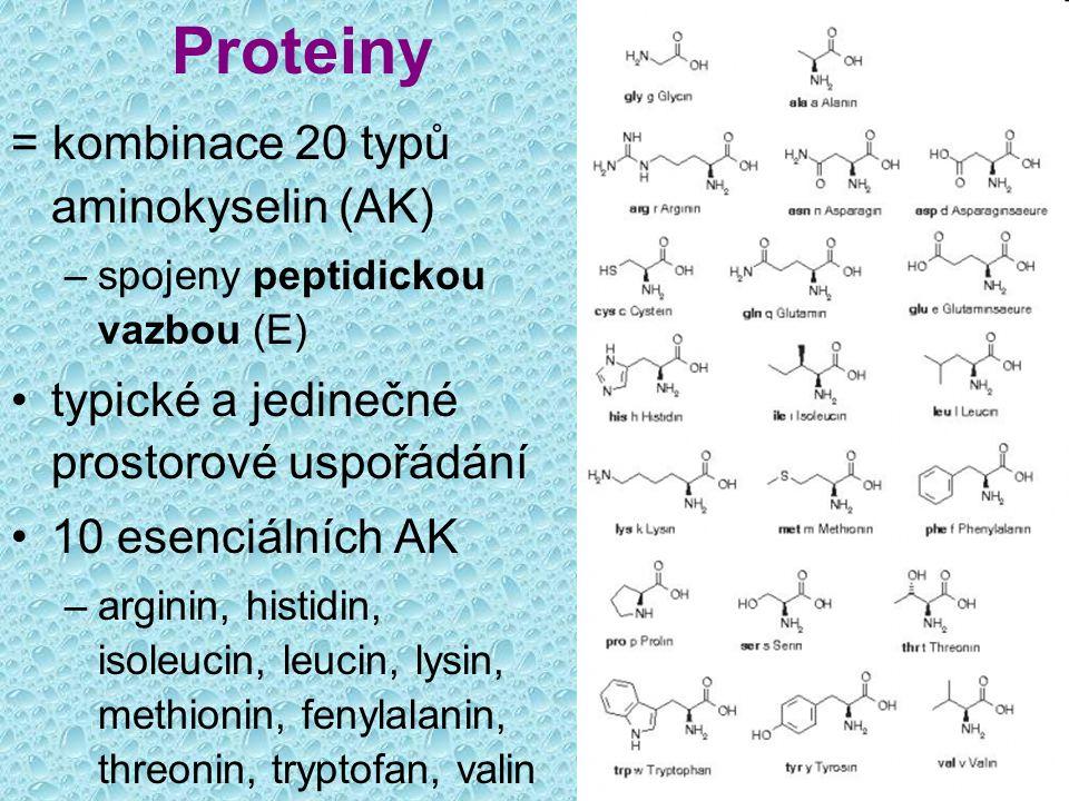 Proteiny = kombinace 20 typů aminokyselin (AK) –spojeny peptidickou vazbou (E) typické a jedinečné prostorové uspořádání 10 esenciálních AK –arginin,
